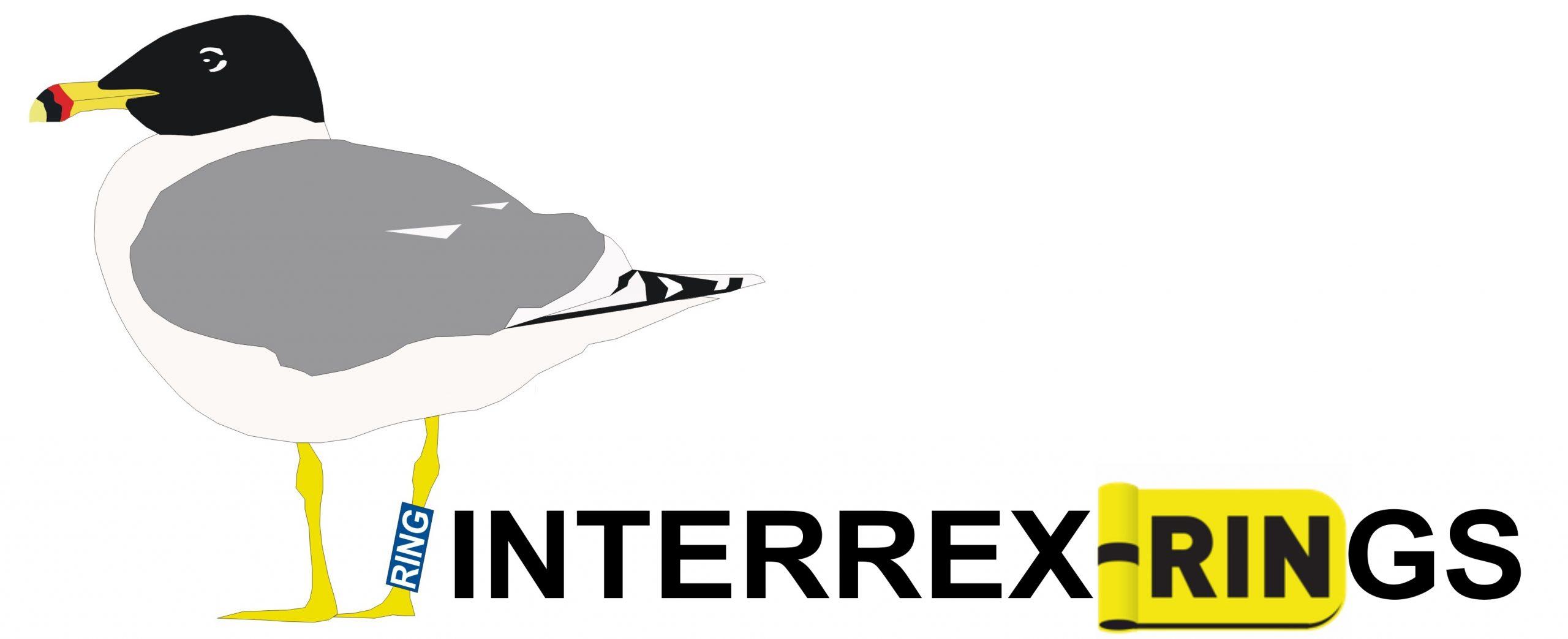 interrex.com.pl - sklep WWW
